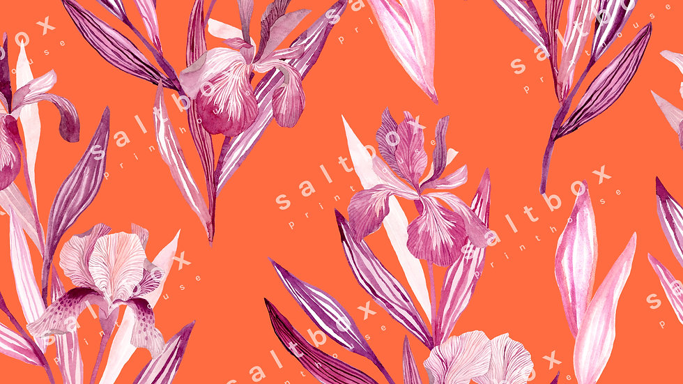 #FLO.035 - Iris flower
