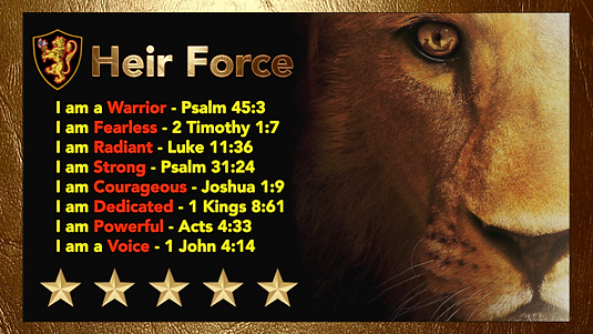 Heir Force Lion.png