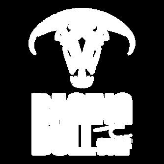 Raging Bull Surf Logo Comb White.png