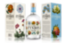 Cape Fynbos Gin Packaging