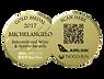 Michelangelo Gold Award