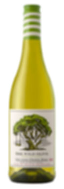 THE WILD OLIVE OLD VINES CHENIN BLANC