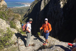 Searching for Cape Fynbos