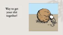 dung beetle encouragement