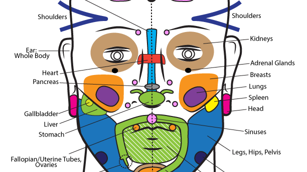 Face Reflexes Chart