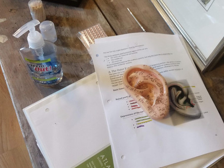 Using Ear Beads in Reflexology Practice