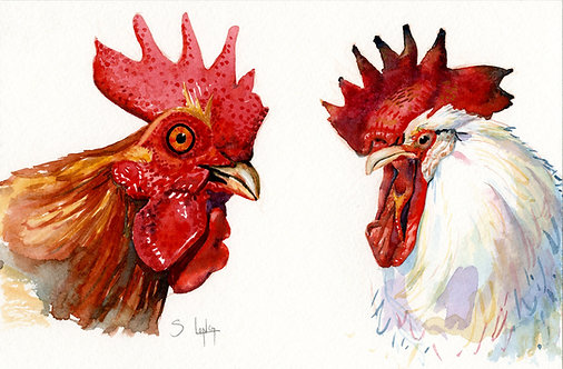 Whimsical Chicken Heads Original Watercolor Sketch