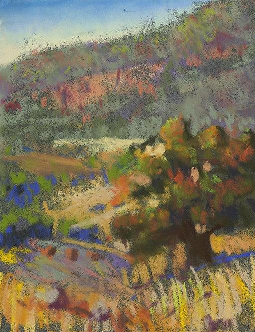 Western Scrub with Tree Pastel Painting Study