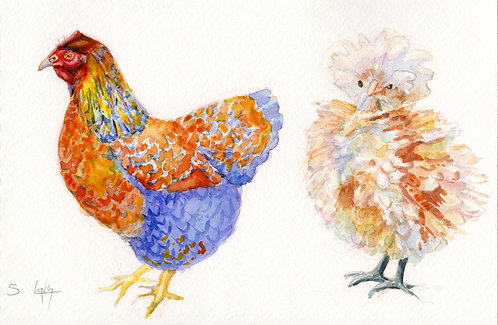 Whimsical Chickens Original Watercolor Sketch