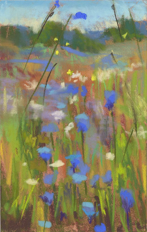 Blue Wildflower Field Pastel Painting Study