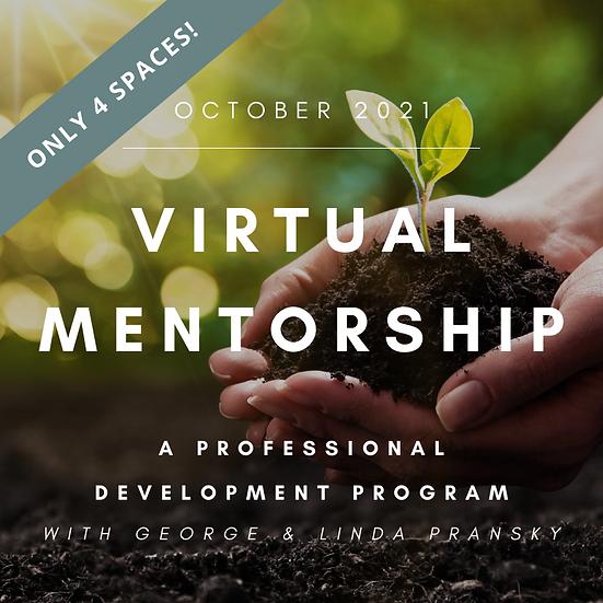 Virtual Mentorship