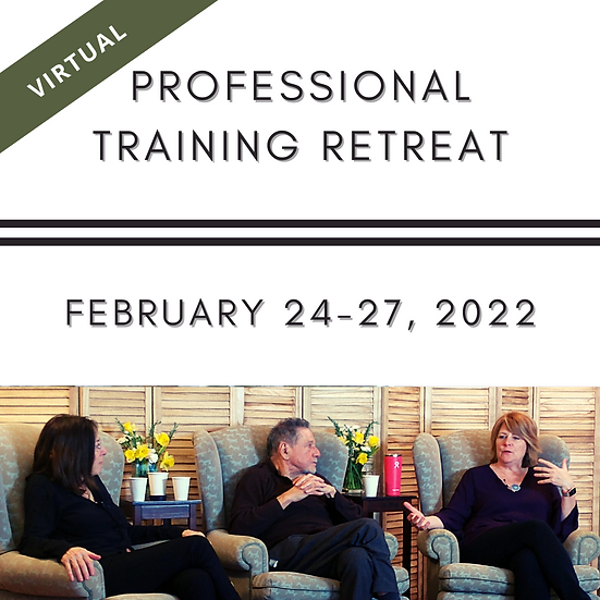 Virtual Professional Training Retreat