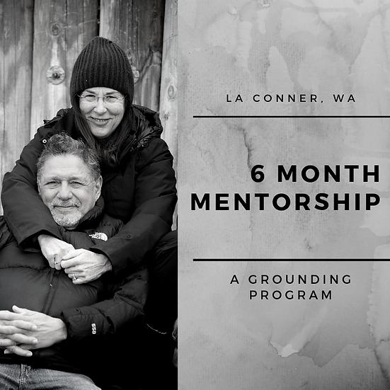 6 Month Mentorship