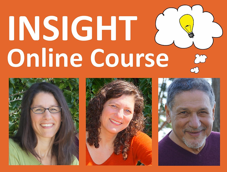 INSIGHT Online Course for Two