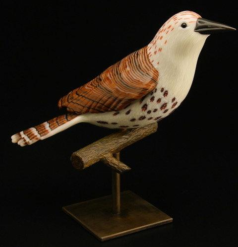 Avian