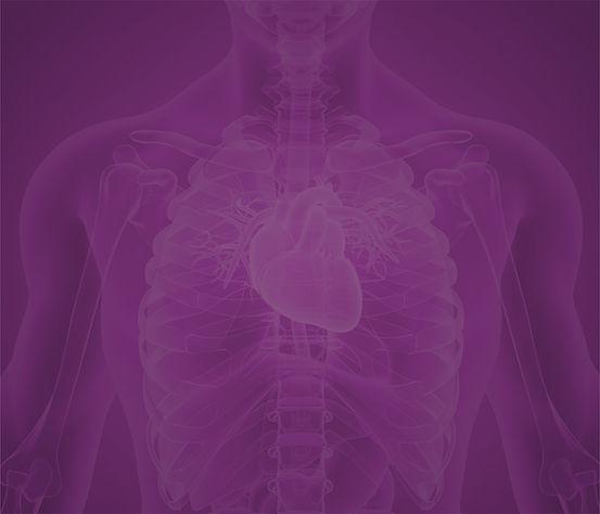 Fisiologia Cardiovascular BG (mais claro