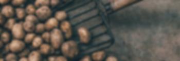 Potatoe bg.png