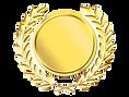 gold medal_edited_edited.png