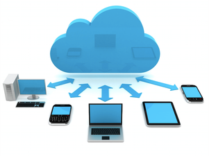 In-House or in the Cloud?