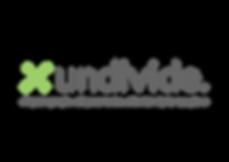 Serra Marketing website business growth undivide SaaS