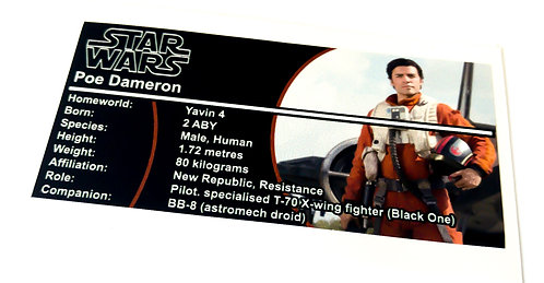 Lego Star Wars Buildable Figure Sticker for Poe Dameron (75115)