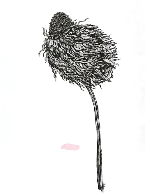 Original botanical ink study, no.iii