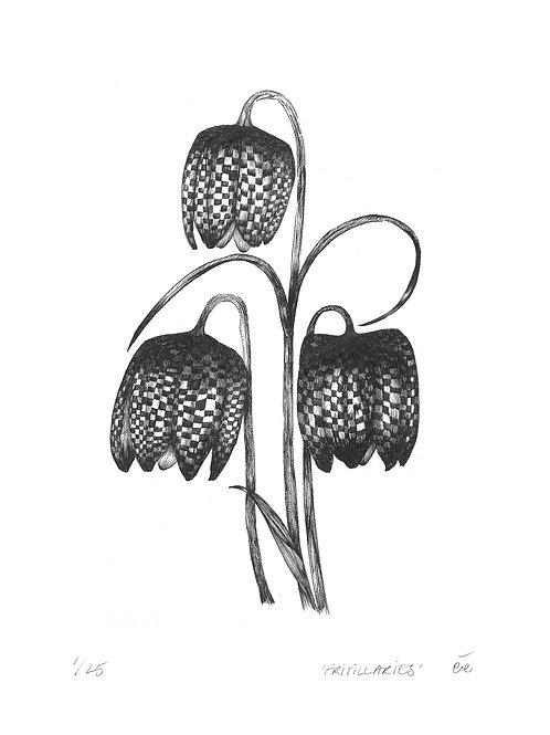 Limited Edition Botanical Print, 'Fritillaries'