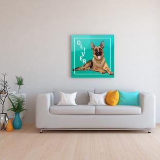 dog_portrait_shepherd.jpg