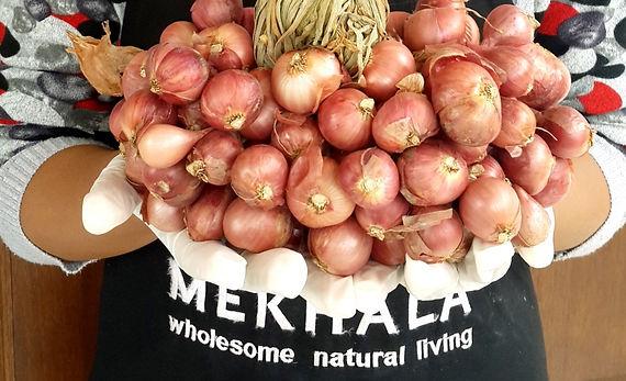 organic vegan ingredients