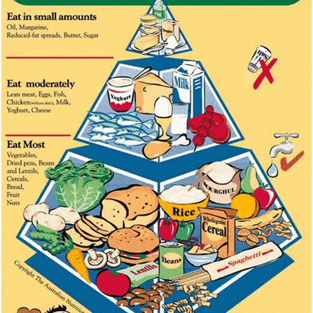 The (Fascinating) Evolution Of The Australian Healthy Eating Pyramid