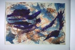 noa_aquarel_nepali-BIRDS