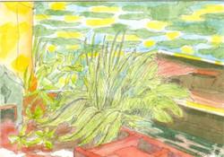 28_Vlot,Plant,Roeiboot