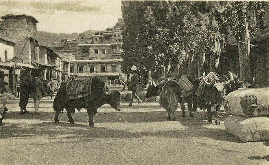 Main market Leh Ladakh