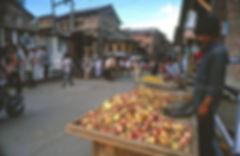 Srinagar street scene.jpg