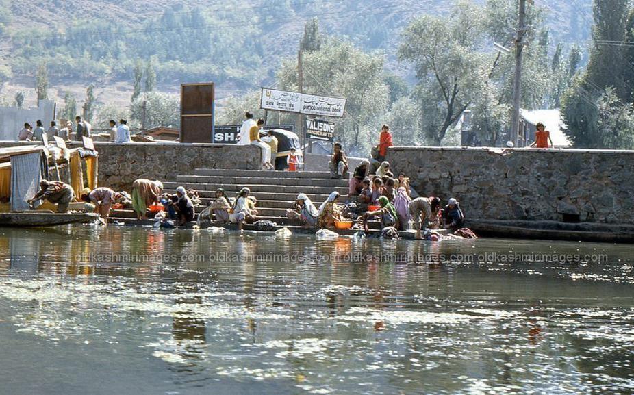 Dal lake, Srinagar Kashmir 1977.jpg