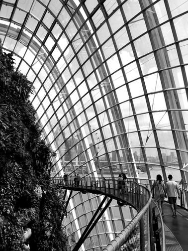 Singapore-Gardens-by-the-Bay-Tourist-Att