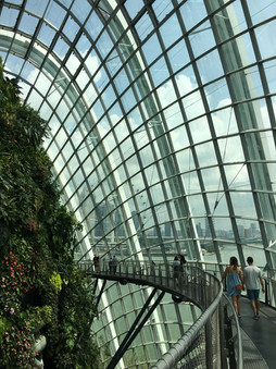Content_by_Janie_Photography_Building_Gardens_by_the_Bay_Singapore.JPG