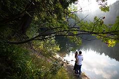 Romance dans la nature