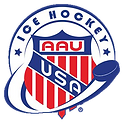 aauicehockey-logo copy.png