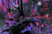 kh Children of the Night watermarked.jpg