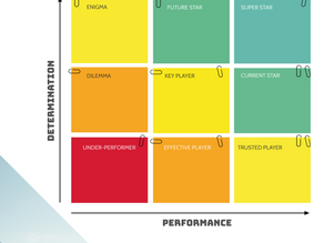 The 9-box Grid of High-performers