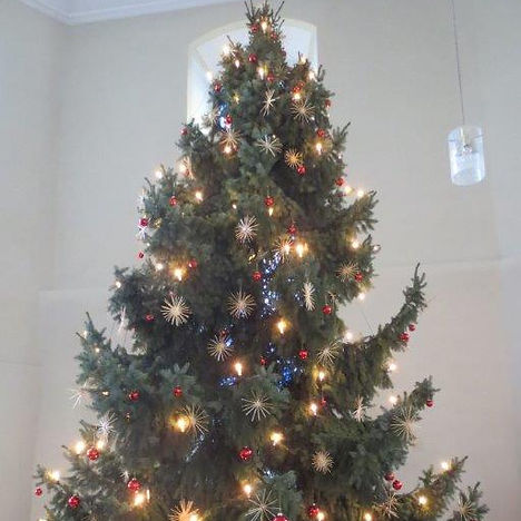 Weihnachtsbaum 2015.jpg