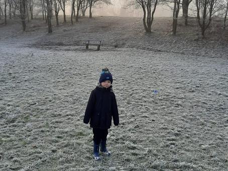 Harry's Winter Walk