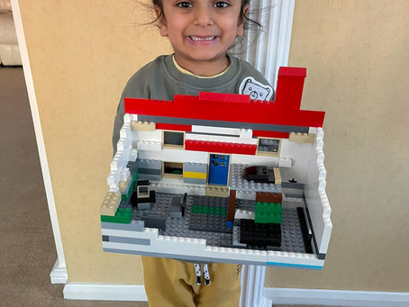 The house made of bricks