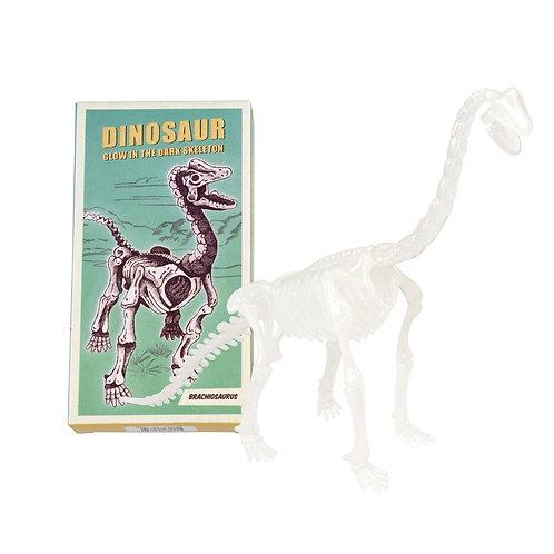 brachiossaurus-dinosaur-skeleton