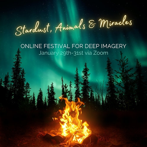 Festival-Ticket - All Workshops inlcuded
