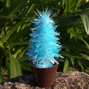 x'mas tree-blue.JPG