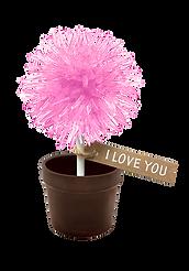 Lollipop tag-Pink-RGB.png