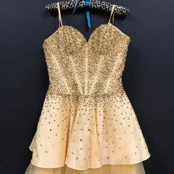 Latin Competition Dress - Gold
