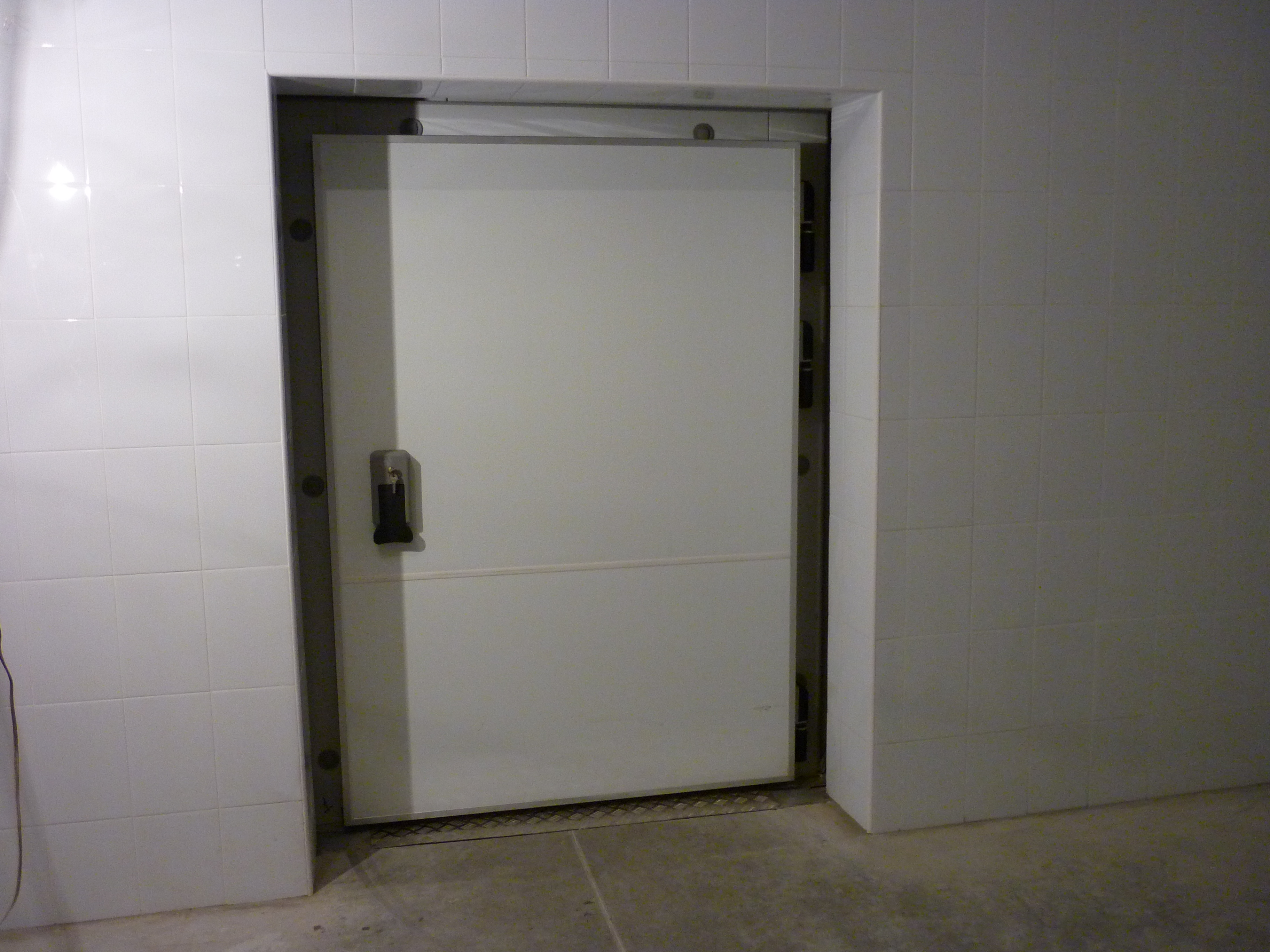 дверь распашная одностворчатая